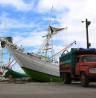 Hobi Fotografi? Yuk..ke Pelabuhan Paotere Makassar